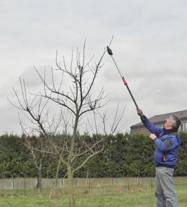 Foto von der Gardena StarCut 160 BL Comfort Baum- und Strauchschneider beim Astschnitt